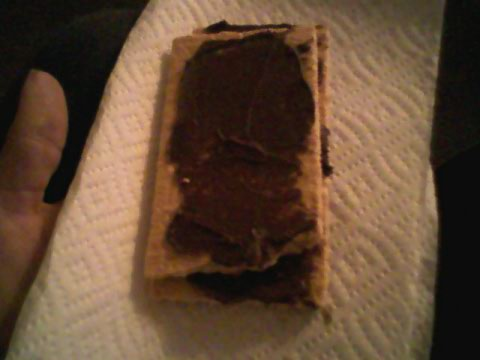 Two graham crackers w/ chocolate icing (that I need to toss out!)