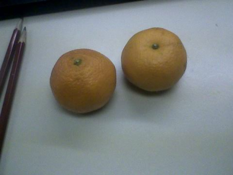 My darling clementines ;-)