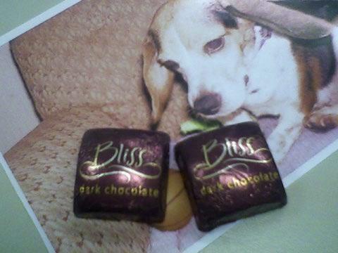 tuesdaychocolate1